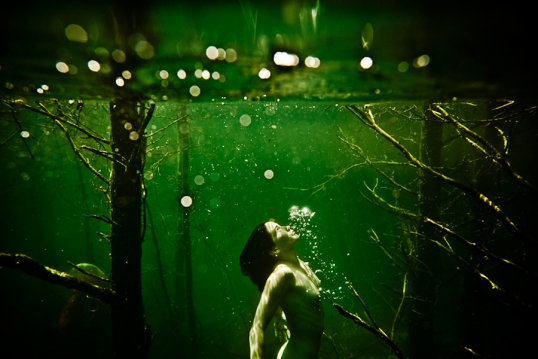 Untitled 177 | 2011