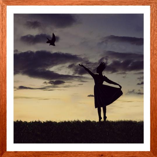 Mother Crows Portfolio
